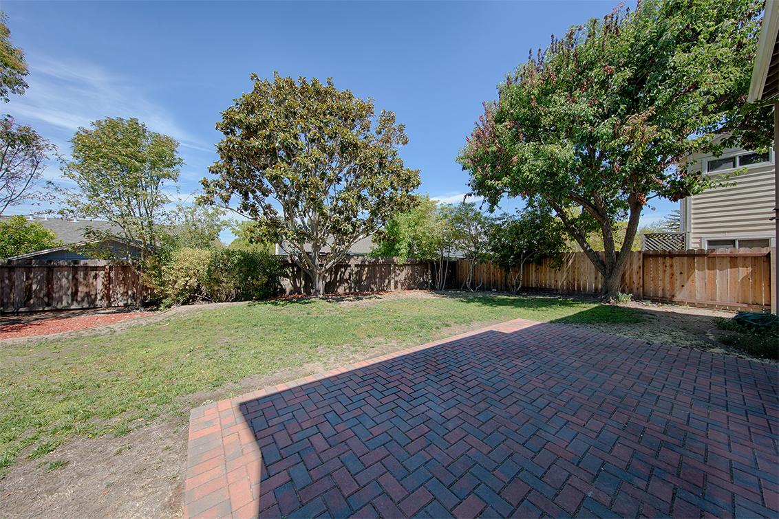Backyard (A) - 42 Port Royal Ave