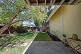 2526 W Middlefield Rd, Mountain View 94043 - Backyard (A)