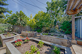 740 Coastland Dr, Palo Alto 94303 - Backyard (A)