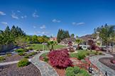 15096 Danielle Pl, Monte Sereno 95030 - Backyard (A)