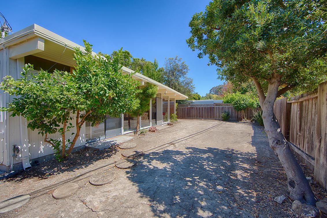 Backyard picture - 3916 Louis Rd, Palo Alto 94303