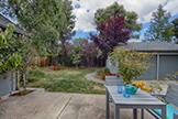 1613 Mariposa Ave, Palo Alto 94306 - Back Yard (A)