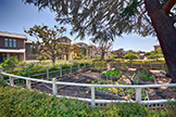 4245 Rickeys Way I, Palo Alto 94306 - Community Garden (A)