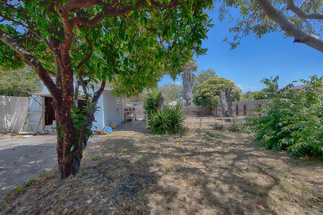Backyard (A) - 1320 Sevier Ave