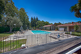 Pool - 10932 Sweet Oak St, Cupertino 95014
