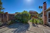 Backyard - 612 Banta Ct, San Jose 95136