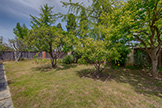 Backyard - 217 Castillon Way, San Jose 95119