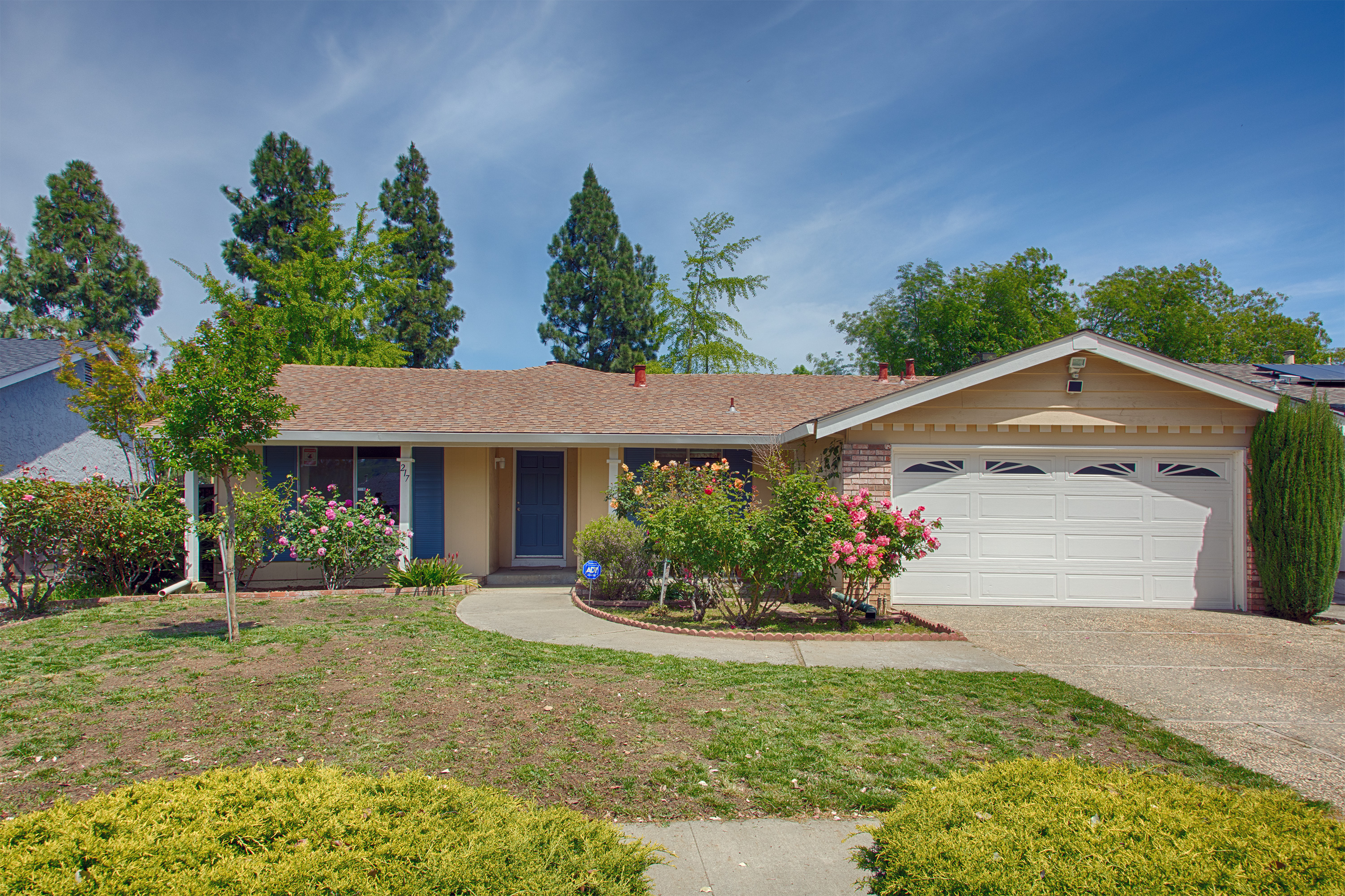 Front View - 217 Castillon Way, San Jose 95119
