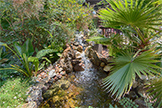 22430 Cupertino Rd, Cupertino 95014 - Water Fall (A)