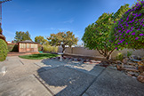 21025 Lauretta Dr, Cupertino 95014 - Backyard (A)