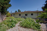 990 Rose Ave, Mountain View 94040 - Vegetable Garden (A)