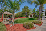 20599 Scofield Dr, Cupertino 95014 - Backyard (A)