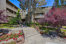 Picture of 800 Sea Spray Ln 211, Foster City 94404 - Home For Sale
