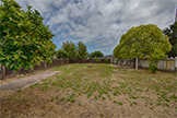 823 W Washington Ave, Sunnyvale 94086 - Backyard (A)