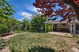 569 Waite Ave, Sunnyvale 94085 - Backyard (A)
