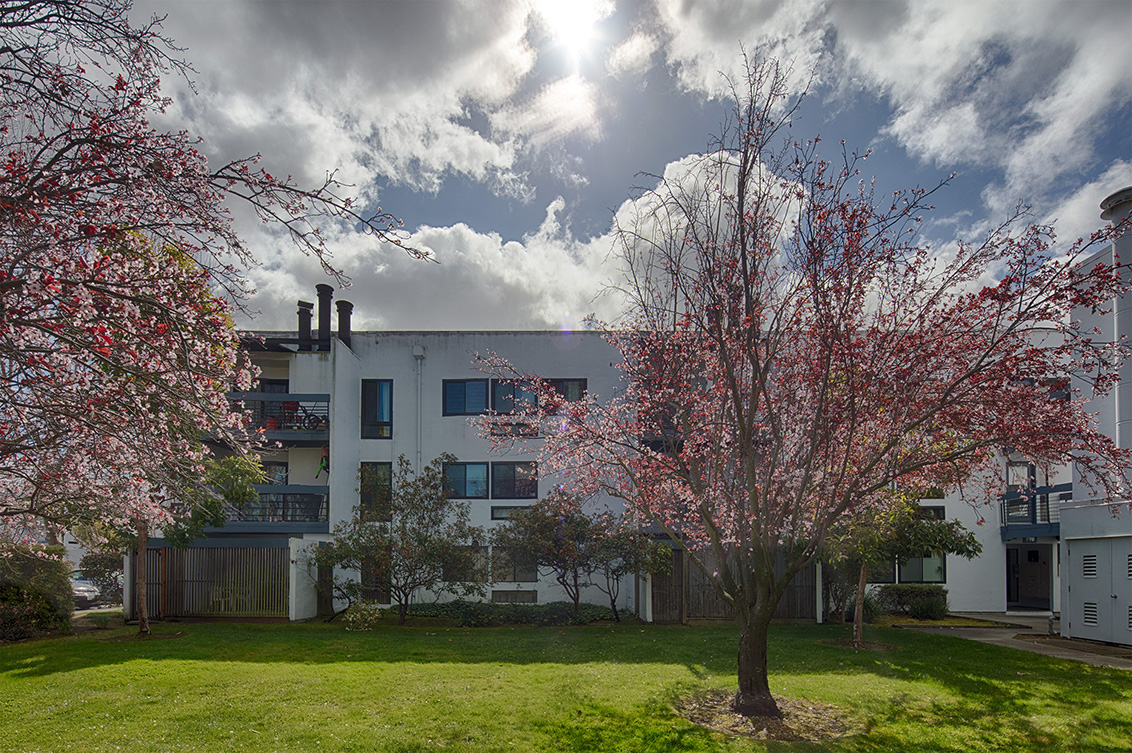 Picture of 910 Beach Park Blvd 100, Foster City 94404 - Home For Sale