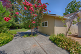 105 Belglen Way, Los Gatos 95032 - Backyard (A)