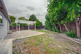 6239 Castillon Dr, Newark 94560 - Backyard (A)