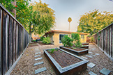 Backyard (B) - 2539 Claire Ct, Mountain View 94043