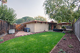 2539 Claire Ct, Mountain View 94043 - Backyard (C)