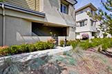 Front (E) - 3732 Feather Ln, Palo Alto 94303