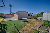 2544 Hazelwood Way, East Palo Alto 94303 - Backyard (A)