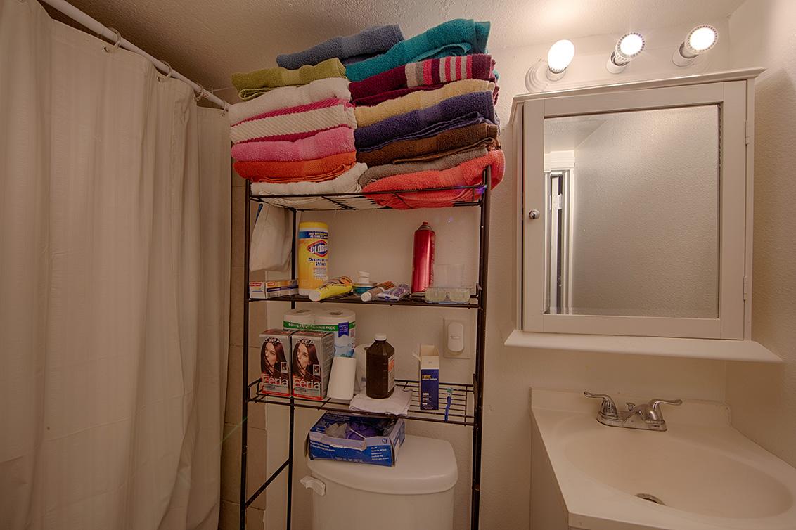 Rec Room Bath (A)