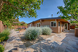 2311 Jewell Pl, Mountain View 94043 - Backyard (A)