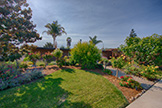 2311 Jewell Pl, Mountain View 94043 - Garden (A)
