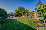 3283 Lindenoaks Dr, San Jose 95117 - Backyard (A)