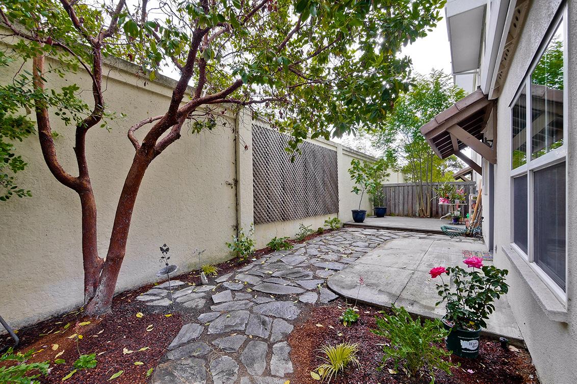 Backyard (A) - 127 Montelena Ct