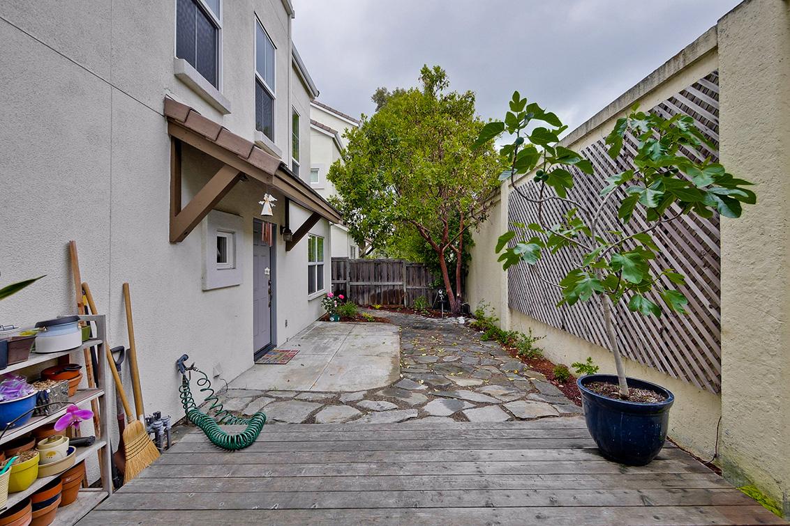 Backyard (E)