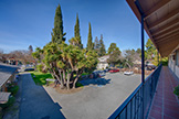 261 Oak St, Mountain View 94041 - Balcony View (A)