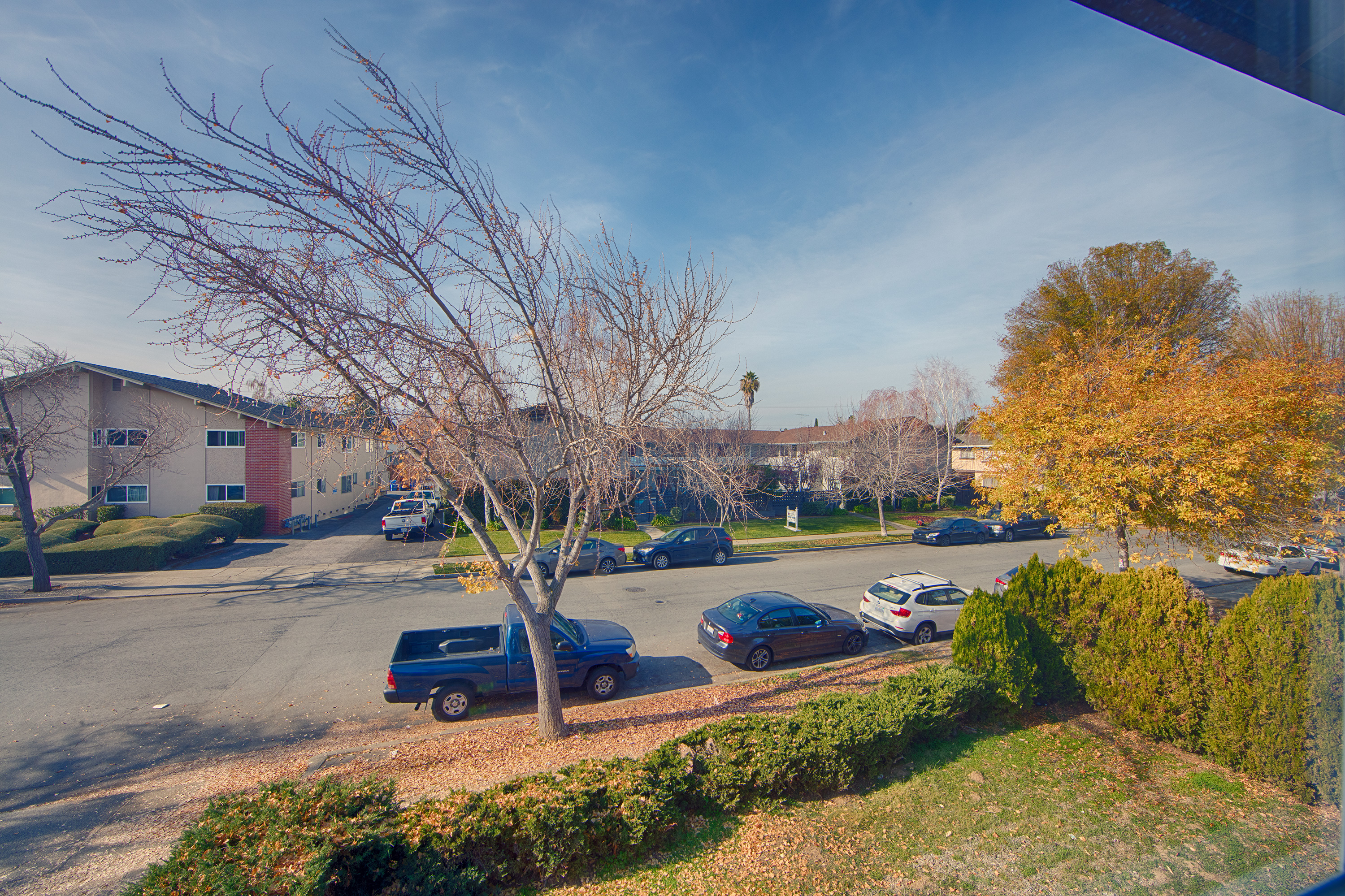 1662 Ontario Dr, Sunnyvale 94087 - Unit 3 Living Room View (A)