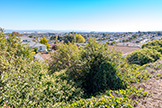 718 Pepper Dr, San Bruno 94066 - Backyard View