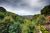 16860 Quarry Rd, Los Gatos 95030 - Balcony View (A)