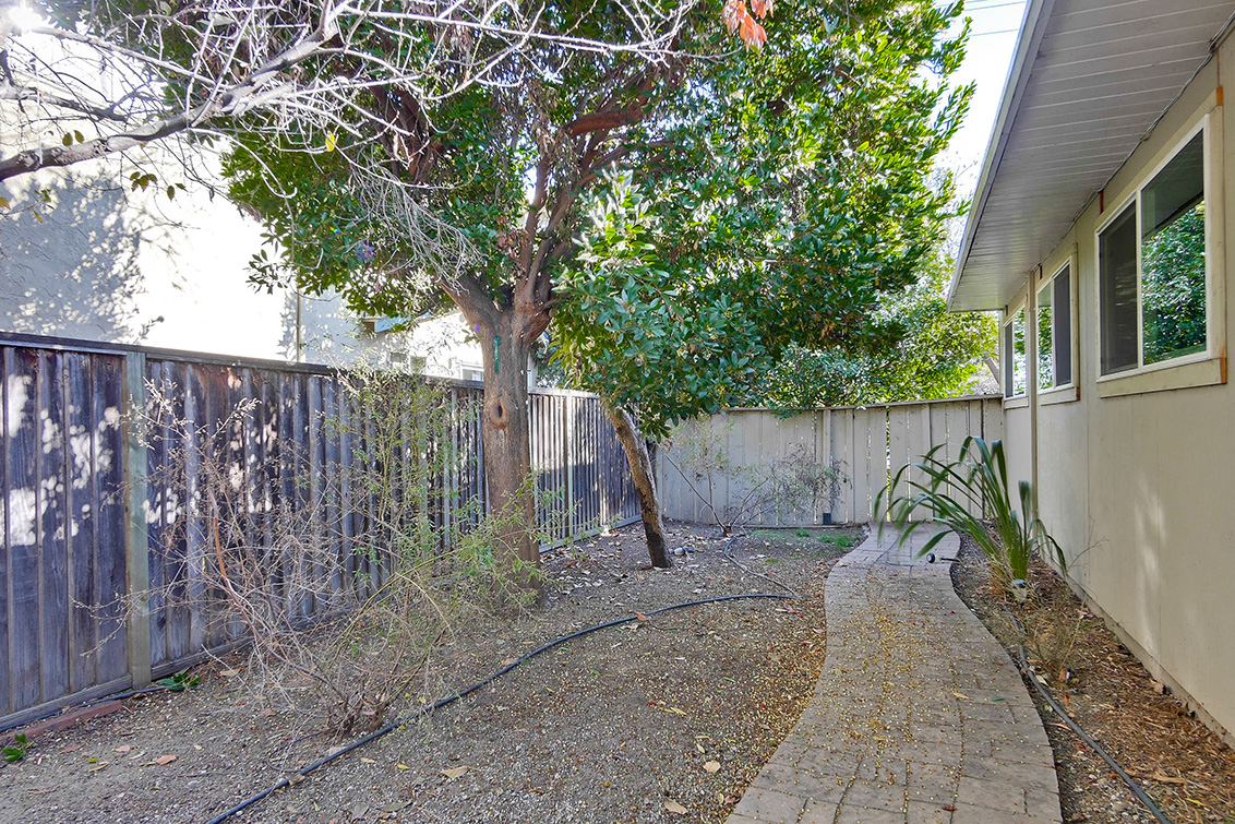 Backyard (G) - 1401 S Wolfe Rd