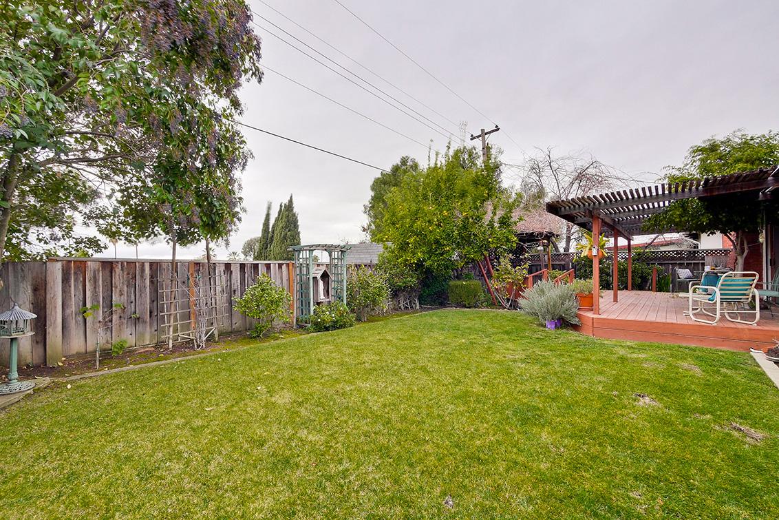 Backyard (D)