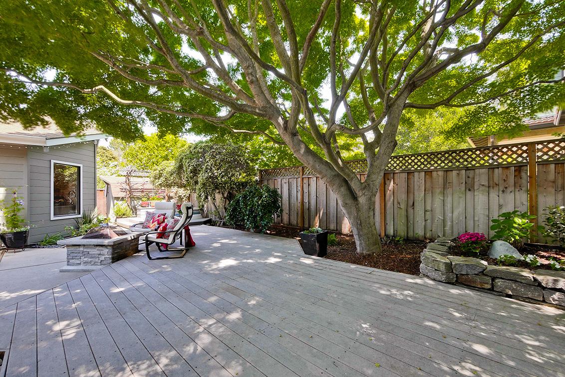 Backyard (I)