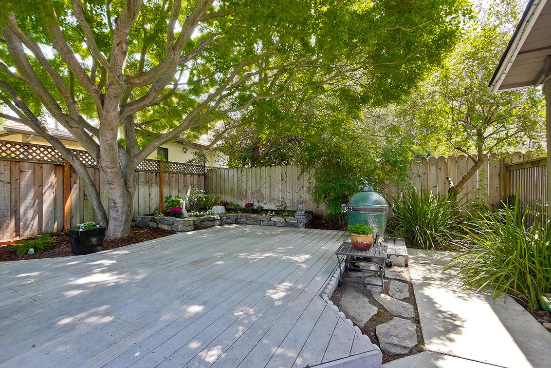 Backyard (L)