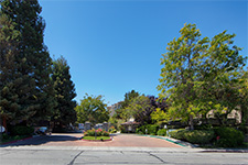 3715 Terstena Pl 412 - Santa Clara CA Homes