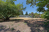 17 Tuscaloosa Ave, Atherton 94027 - Backyard (C)