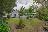 Mini Orchard (B) - 704 Winchester Dr, Burlingame 94010