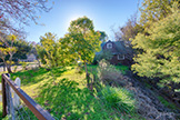 1400 Edgewood Rd, Redwood City 94062 - Sideyard (B)