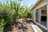 2419 Fordham Dr, Santa Clara 95051 - Back Yard (A)