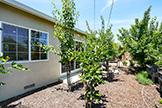 2419 Fordham Dr, Santa Clara 95051 - Back Yard (B)