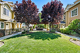 2214 Raspberry Ln, Mountain View 94043 - Common Entrance (A)