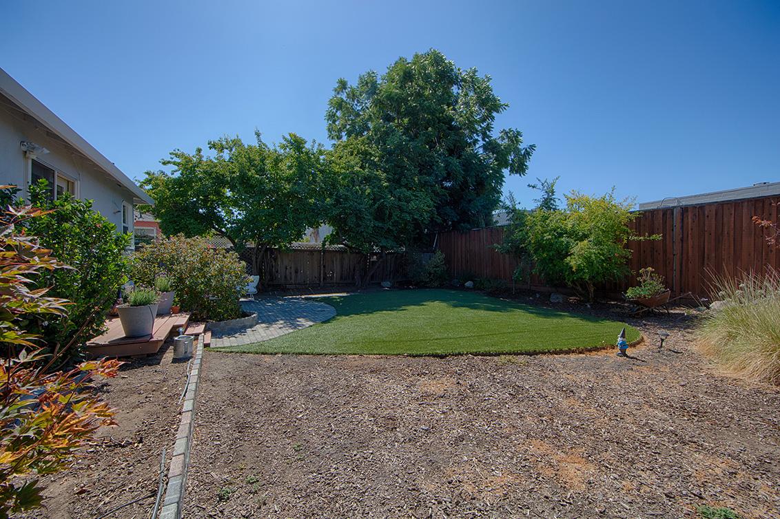 Backyard (D) - 518 Scott Ave