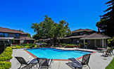 18847 Biarritz Ct, Saratoga 95070 - Swimming Pool (C)