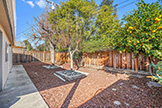 1342 Forrestal Ave, San Jose 95110 - Backyard (A)